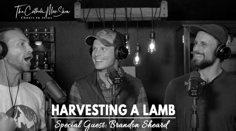 harvesting-a-lamb.png
